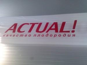 Поликарбонат Актуаль— прочные светопрозрачные полотна