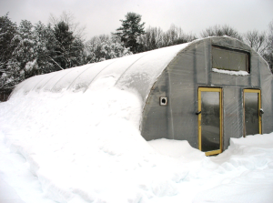 Зимние теплицы из поликарбоната— выращивайте растения зимой