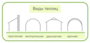 Какие виды теплиц из поликарбоната бывают?