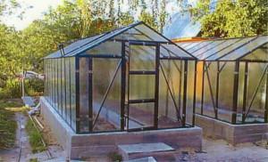 Квадратная теплица из поликарбоната — лучший парник для выращивания высоких растений