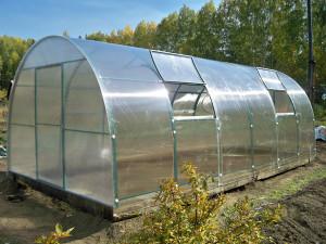 Теплица «Крепыш» из поликарбоната — невысокий парник для увеличения урожайности