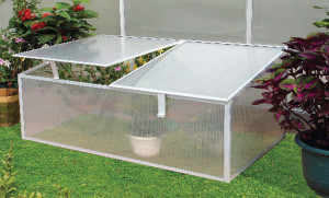 Мини-теплицы из поликарбоната — удобный парник для выращивания здоровой рассады