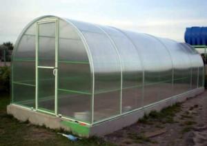 Сварные теплицы из поликарбоната— лучшие парники для выращивания растений круглый год