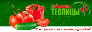 Сибирские теплицы— гарантия хорошего урожая