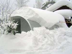 Фото: Любой снегопад не страшен