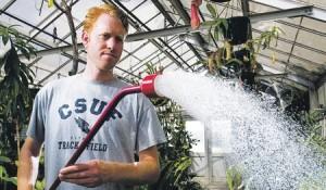 Полив в теплице из поликарбоната— как получить хороший урожай?