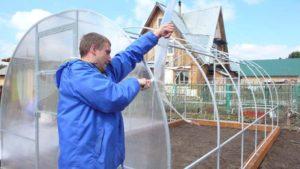 Как покрыть крышу теплицы поликарбонатом?