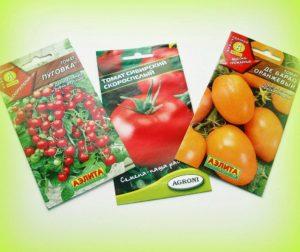 Фото: Сорта томатов