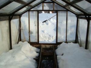 Фото: Подготовка к зиме